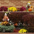 Thanksgiving display 2015