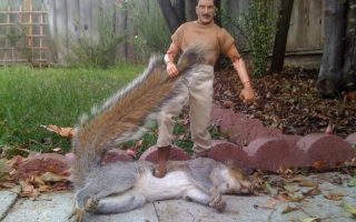 Man with foot on squirrel