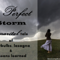 the perfect storm a tale of light bulbs, lasagna and lessons learned