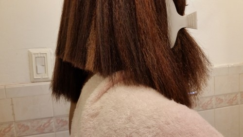 tiff wiht cut hair - side view