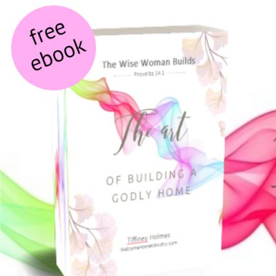 "Peep My New Ebook! ""The Wise Woman Builds: The Art of Home Building"""